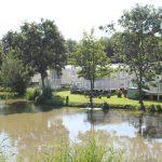 Sycamore farm fishing lakes