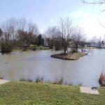 sycamore fishing lakes